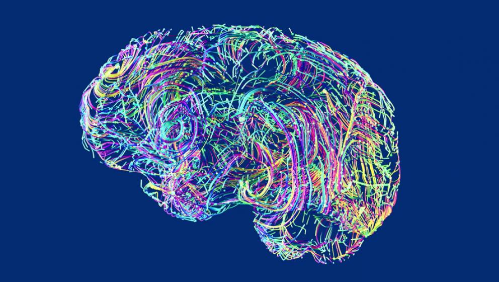 illustration av hjärna i neon färger