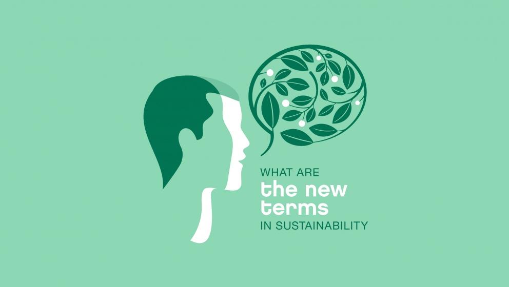 grön illustration - vilka är de nya villkoren för hållbarhet